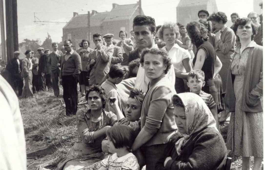 Bois du cazier août 1956 03